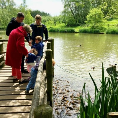 My Top 5 Picks for a Family Day Out in Surrey image